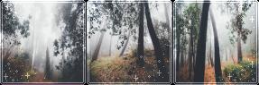 F2U|Decor|Autumn Forest #2