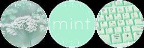 F2U Decor Minty