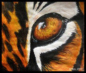 Tiger's Eye by Roshila