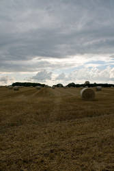 field of dreams by cubstock
