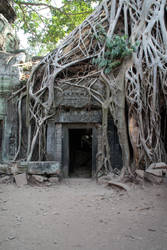 Angkor Wat III