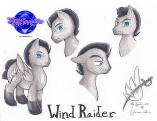 Comm: Wind Raider