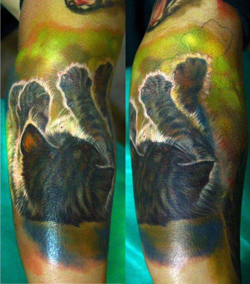 cat sleeve in progress by NikaSamarina
