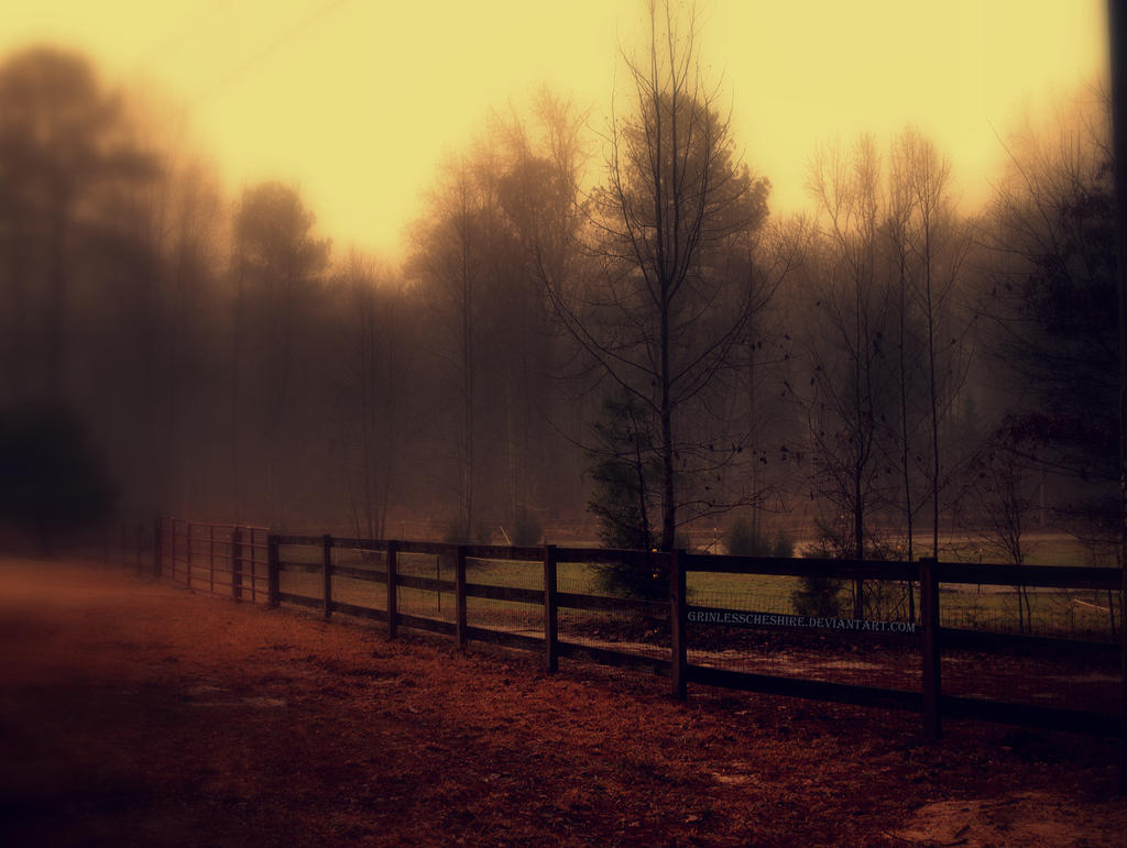 Misty Mornings II by PixiePoxPhotography