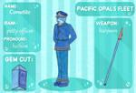 Pacific Opal's Fleet App: Cornetite