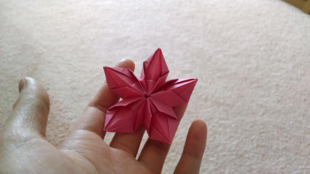 The Origami Forum O View Topic Searching For Diagrams Of 2 Flowers