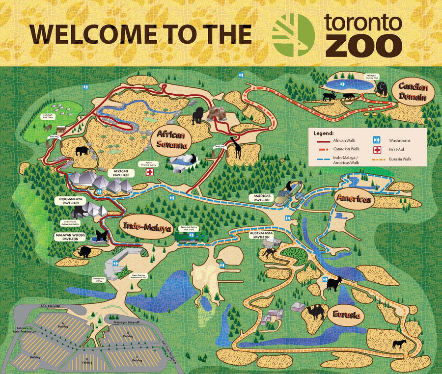 Zoo Map Design