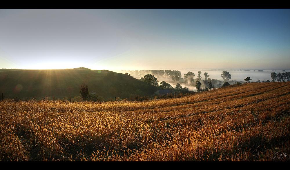 Misty Sunrise by IzabelaMilczarek