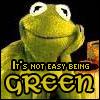 Kermit the frog by Azkadellia