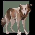 Wolf sketch gift