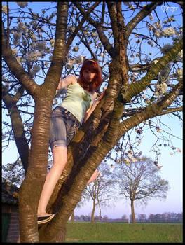 Blossom Tree + Me