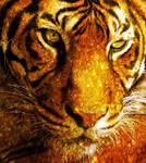 Golden Tiger by XStitchedxDreamsX