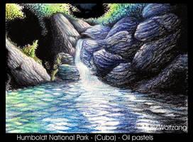 Humboldt National Park  Cuba - oil pastels