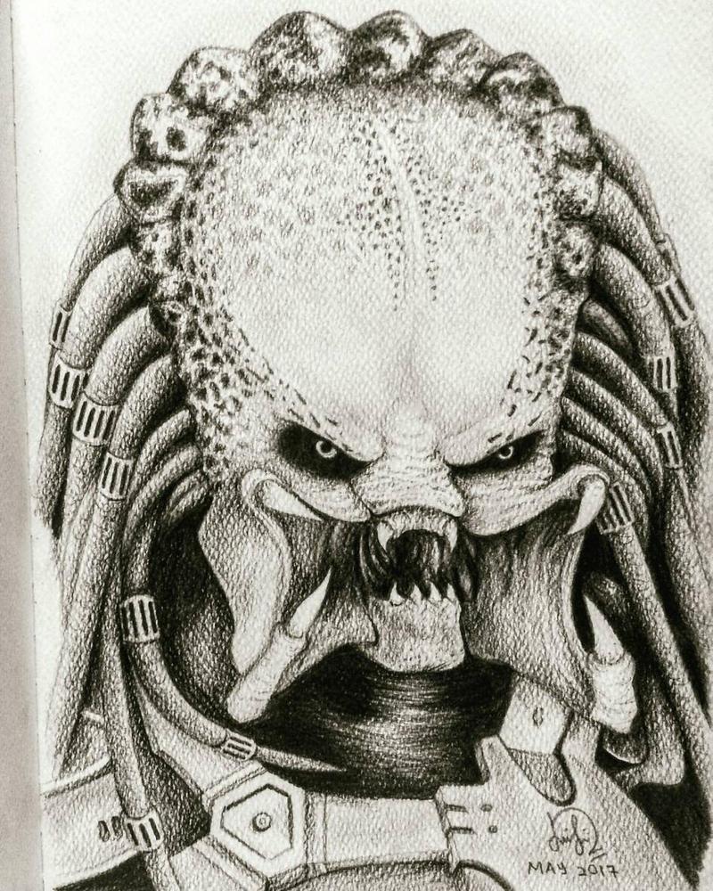 Predator by Laily95