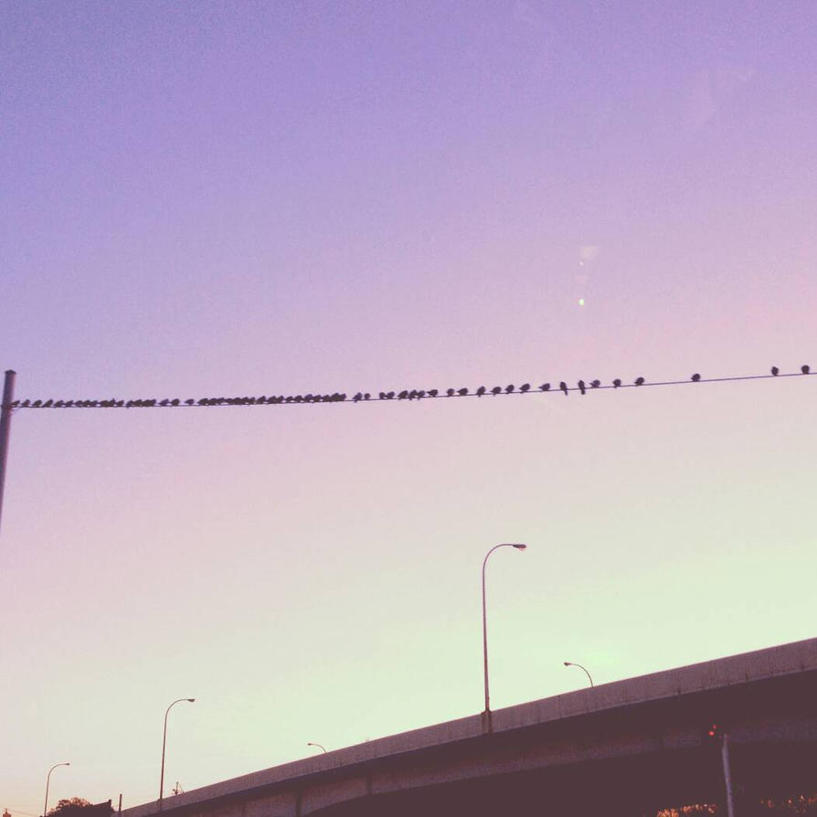 On the Wire by Graceleen