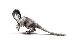 Velociraptor mongoliensis by WanderingAlbatross