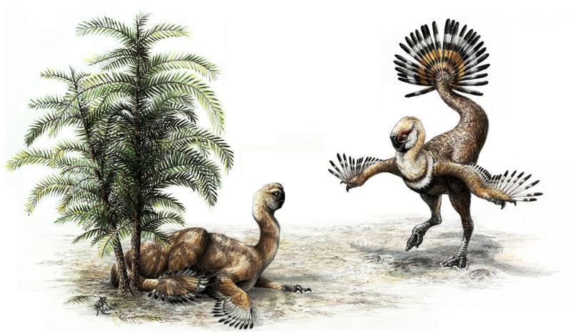 Oviraptorosaur Tails by WanderingAlbatross