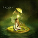 In the Lilypond