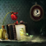 The Magic Book by flina