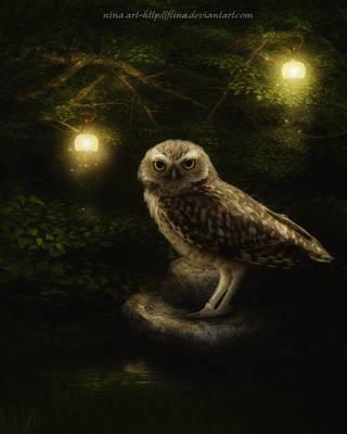 Owl by flina