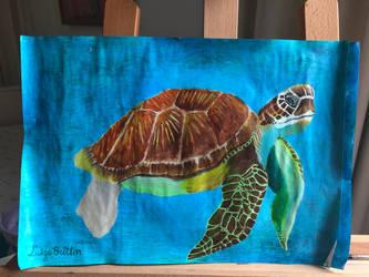 i like turtles :) by Brownielonglegs
