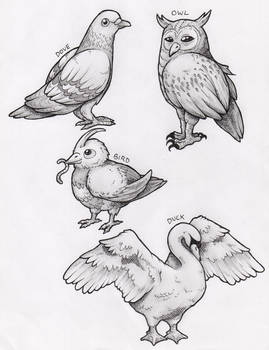 Feathered Beasts
