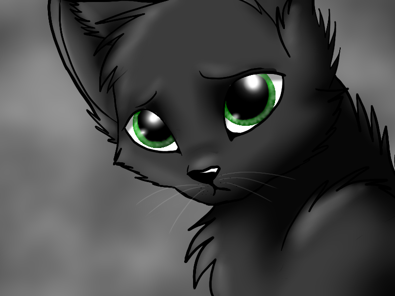 Hollyleaf By Wolvesandcatsclan On DeviantArt