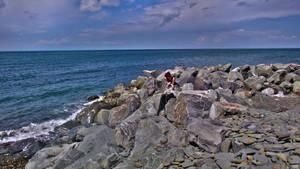 Aberaeron on the Rocks