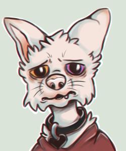 lazy-procrastinator's Profile Picture