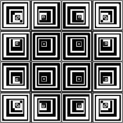 Black White Transition by artstarter