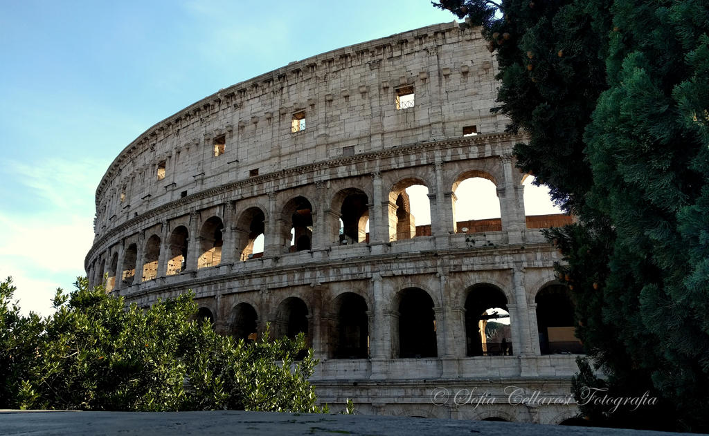 Coliseo Romano By Dreamhumansacrifice On Deviantart