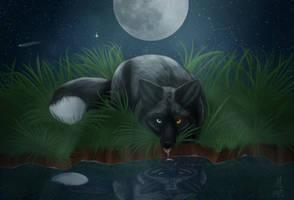In the Moonlight by MaykaDraws