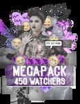 +Megapack 450 watchers