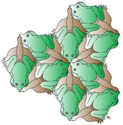 Frog  Bird - Init