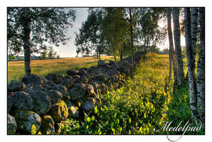 Old stone wall by AnteAlien