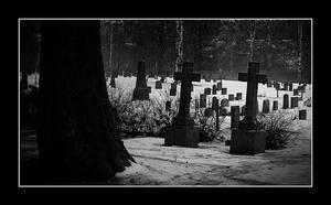 Graveyard by AnteAlien
