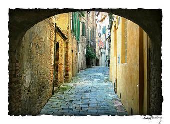 Old town of Siena by AnteAlien
