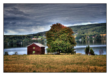 Norrland - Meadow by AnteAlien