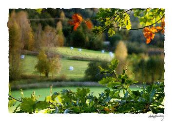 Autumn farmland by AnteAlien