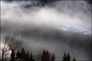 Fog by AnteAlien