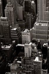 New York on top