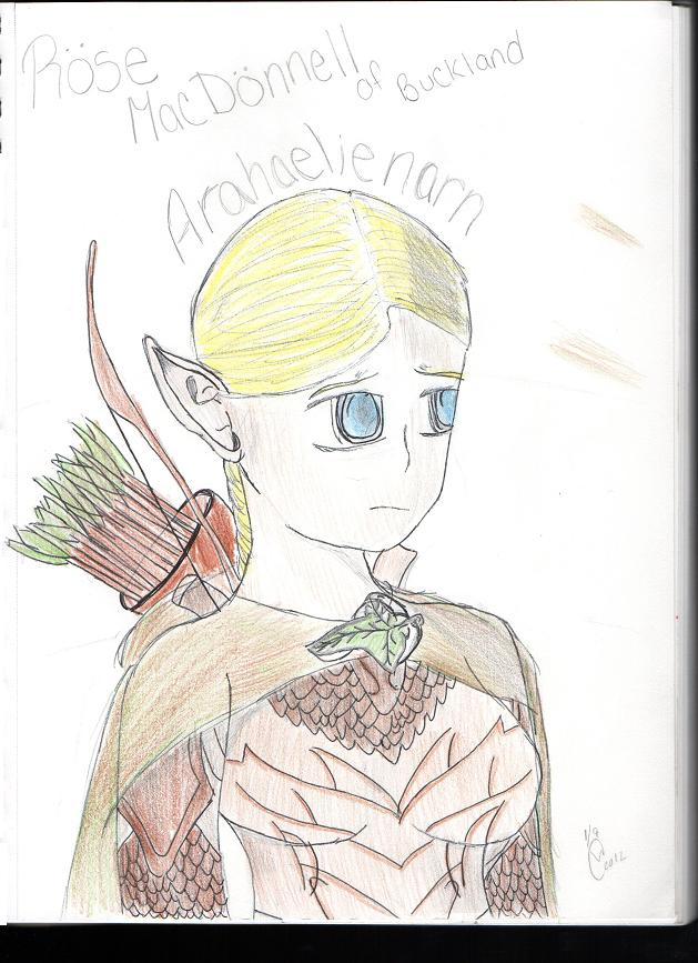 Lord of The Rings OC~ Rose of Buckland (COLORED) by DaFuzzyDude1