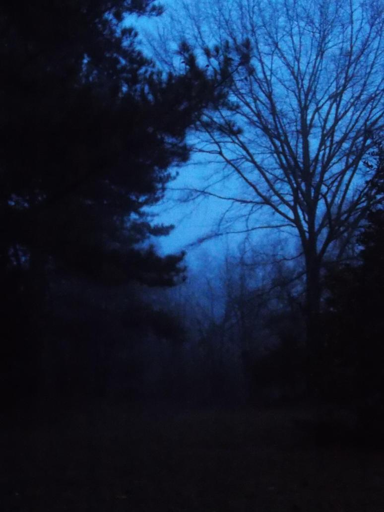 Fog by Anna-Gracie