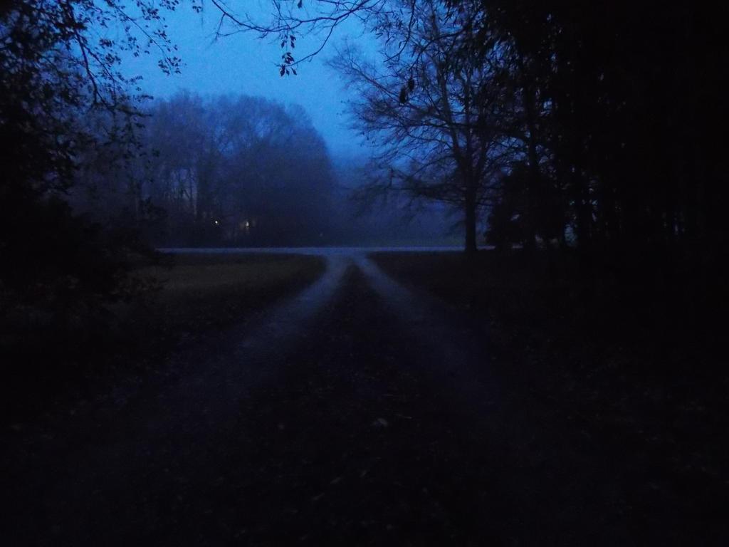 Driveway by Anna-Gracie