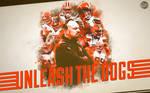 Cleveland Browns 2015 wallpaper