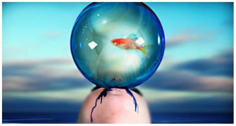 to trap a goldfish soul