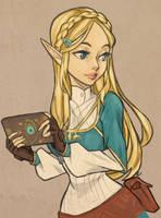 Zelda Botw2 by Minty-Lint