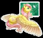 Fluttershy (+SPEEDPAINT)