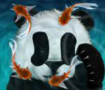 Baby Panda Playing with Koi