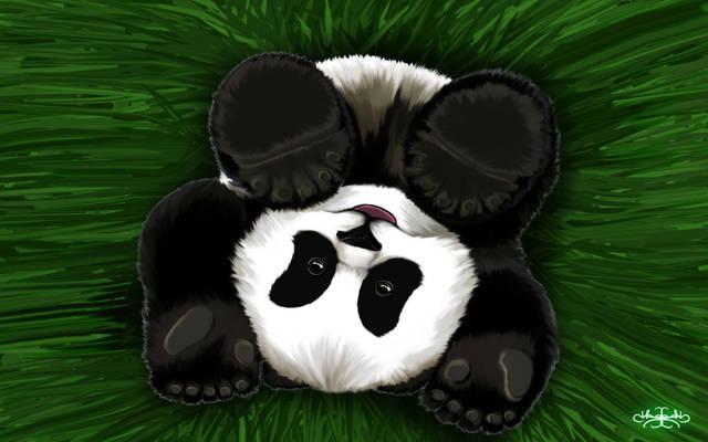 Roly Poly Panda Cub